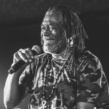 Horace Andy @ Caromb