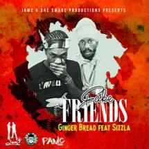 Sizzla Ft. Gingerbread Mane - Fake Friends le clip