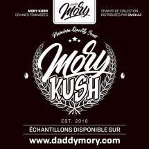 Mory Kush : Daddy Mory et ses graines magiques !