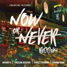 Now Or Never Riddim