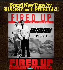Shaggy brand new tune