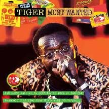 Tiger Most wanted !!!